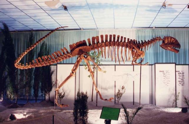 Dinopétrea es una exposición sobre paleontología con ejemplares de dinosaurios traídos de todo el mundo. Esta exposición científica explica por qué se extinguieron estos animales y permite observar restos fósiles. Abierta desde el 15 de Noviembre en el Pabellón de Navegación de La Cartuja de Sevilla.