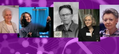 El Parque de las Ciencias trae la exposición 'Mujeres en Bioquímica y Biología Molecular' a Granada con motivo del XXXVII Congreso de la Sociedad Española de Bioquímica y Biología Molecular. Estará hasta el 30 de Noviembre.